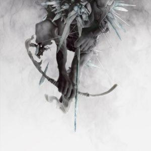 Linkin Park - The Hunting Party (Import, EU)